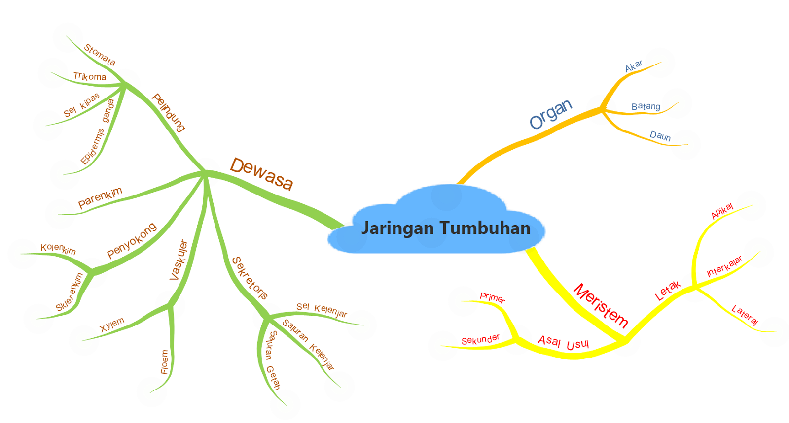 Mind map jaringan tumbuhan blog mind map jaringan tumbuhan ccuart Image collections
