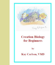 Creation Biology for Beginners