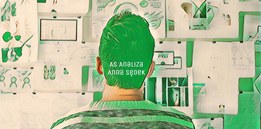 AS Analiza - Anna Sędek