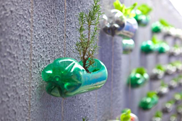 jardim vertical urbano:Plastic Bottle Garden
