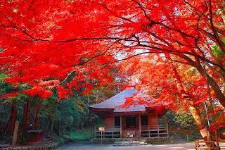 Hiraizumi, Japan (Best Honeymoon Destinations In Asia) 1