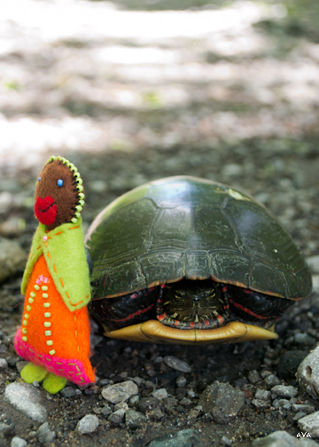 Little Mother cozies up to a disgruntled looking painted turtle.