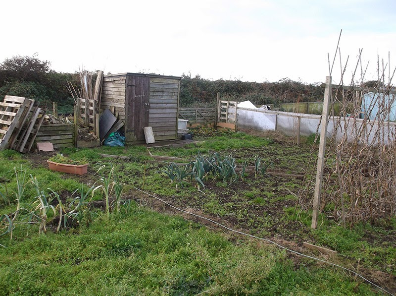 St Ives Cornwall - Allotment