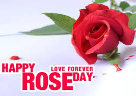 Happy-Rose-Day-Sweet-Wishes-Messages-with-Images-1