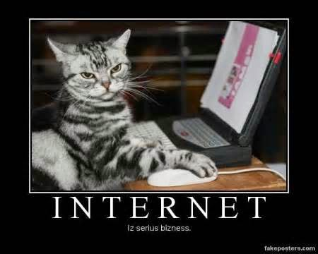 Net Neutrality means equal internet access for all -- even this cat