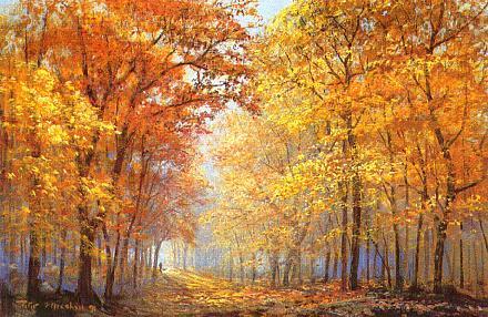 Ciri-ciri bioma hutan gugur adalah sebagai berikut :