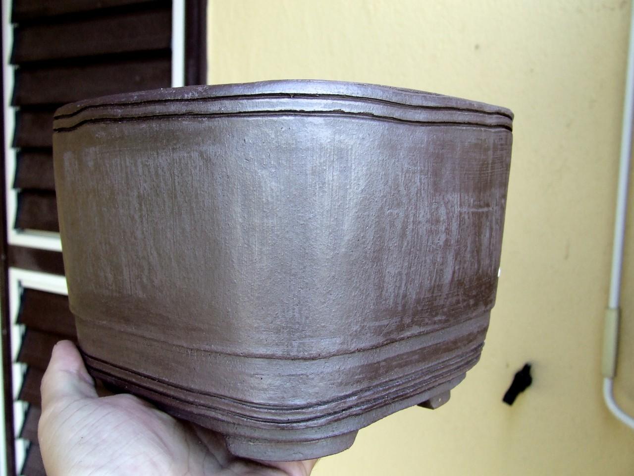 Vaso per bonsai in semi cascata levigato verticalmente for Vasi per bonsai grandi
