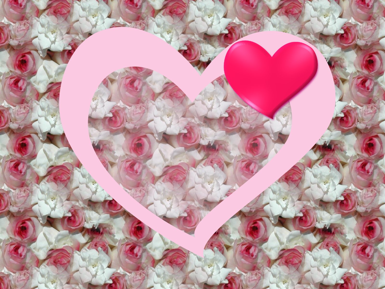 Lite Pink Roses With Heart
