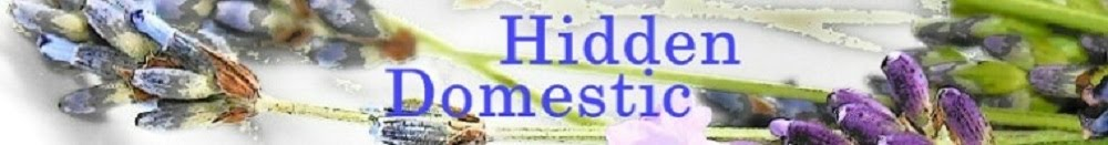 The Hidden Domestic
