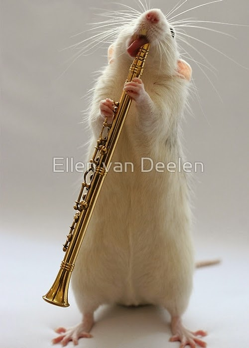 04-The-Clarinet-Player-Musical-Dumbo-Rat-Ellen-Van-Deelen-www-designstack-co