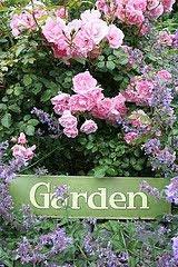 Trädgårdsliv & Design