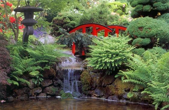 paisagem com árvores, plantas, flores, pequena ponte vermelha sobre um riacho