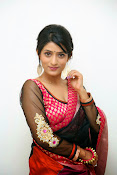 Nidhi Natuiyal Glamorous Photos in Saree-thumbnail-4
