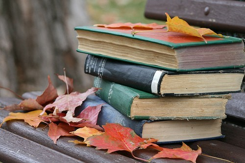 Image result for reading books in the fall