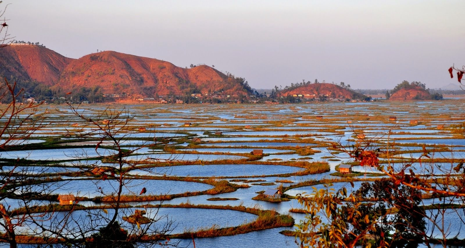Keibul Lamjao on Loktak Lake, Manipur