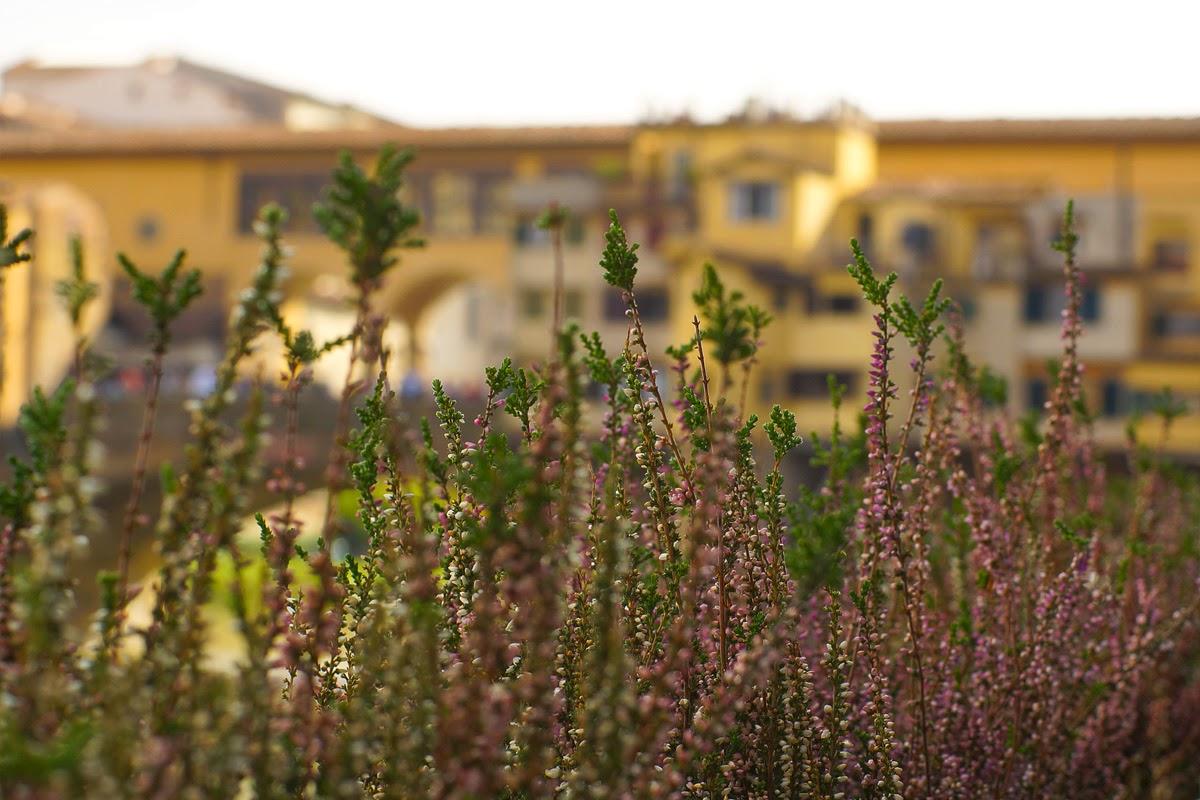 Firenza i Toskana