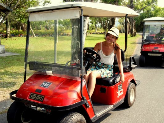 The writer chose to rent a buggy during her farm trip, which allowed her to move around without breaking a sweat.