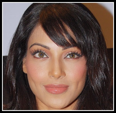 Bipasha Basu: Diamond Face with Soft angled eyebrows