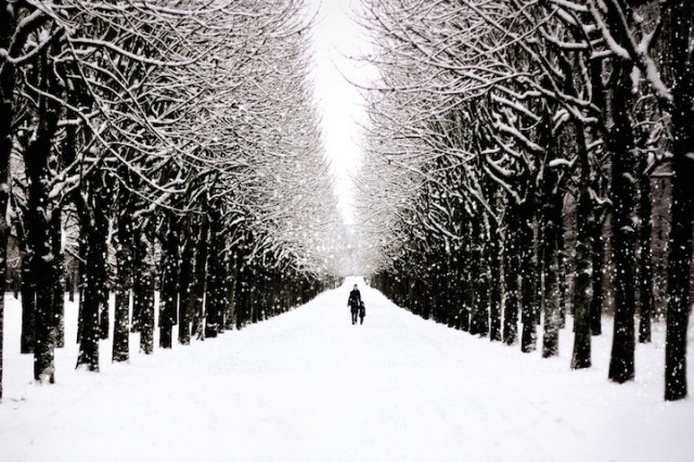 Paris, France - 19 Breathtaking Photos Of Winter Wonderlands Around The World