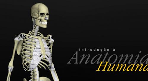 Introdução à Anatomia Humana 3D [Portátil]