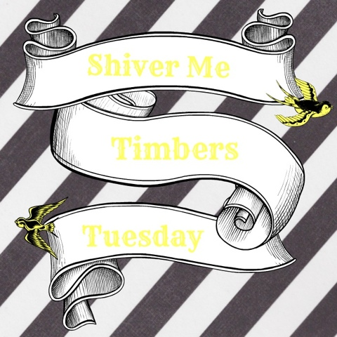 Shiver Me Timbers Tuesday - June 2014 | Pirate Prerogative