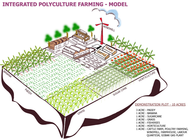 monocultural farming in the u s 2002 us farm bill on us and world agricultural production and trade   specific agricultural commodities — the greater is the incentive for monoculture.