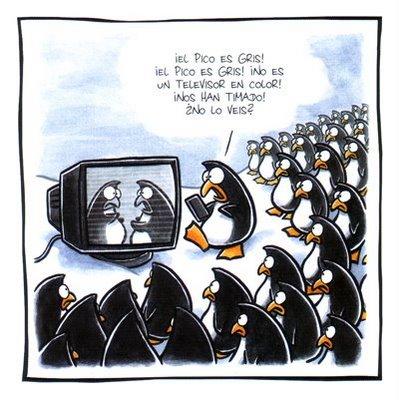imagenes graciosas de club penguin julio 2013 - YouTube