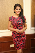 Vishaka singh at rowdy fellow event-thumbnail-7