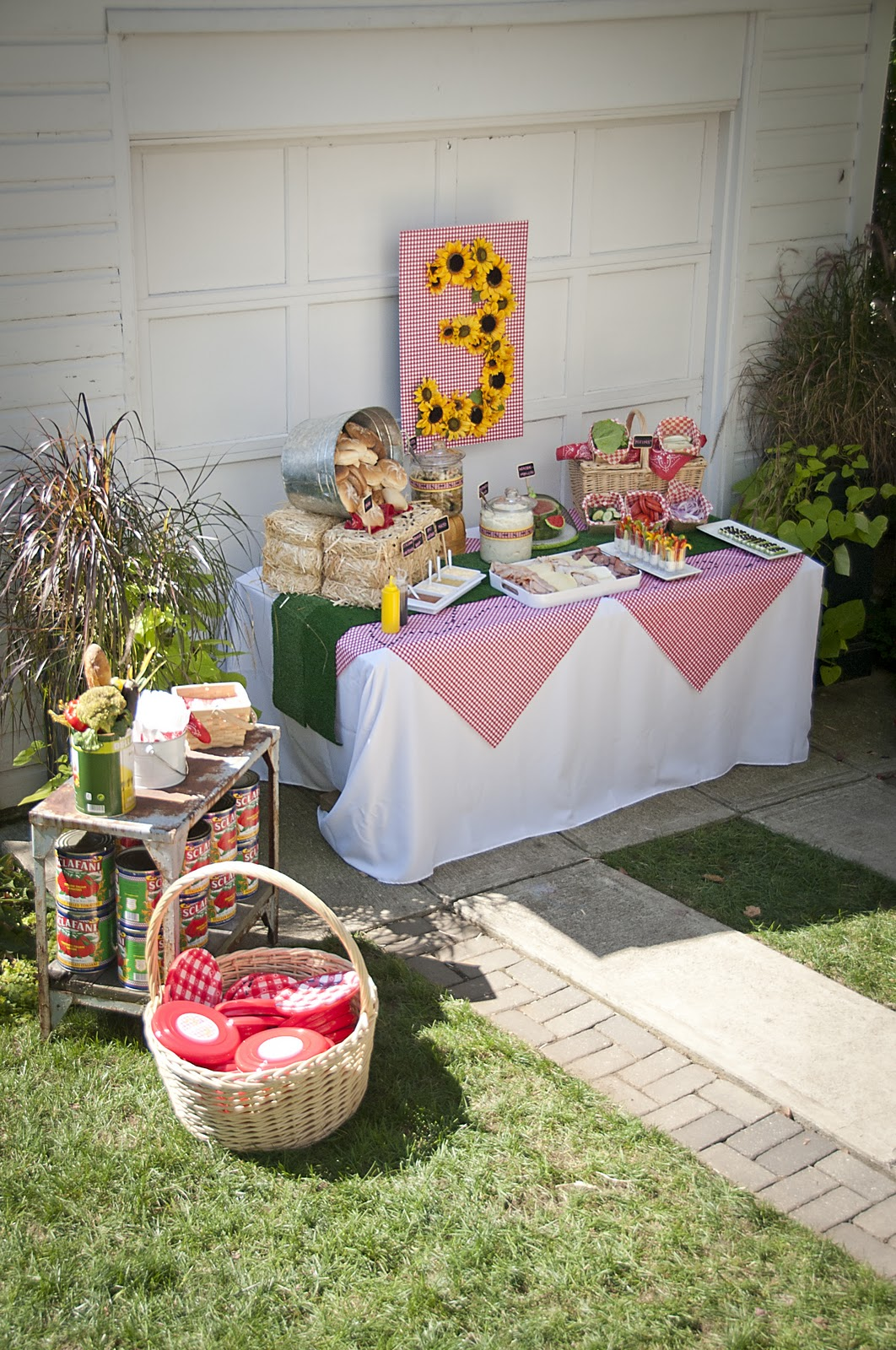 a. party style: picnic party