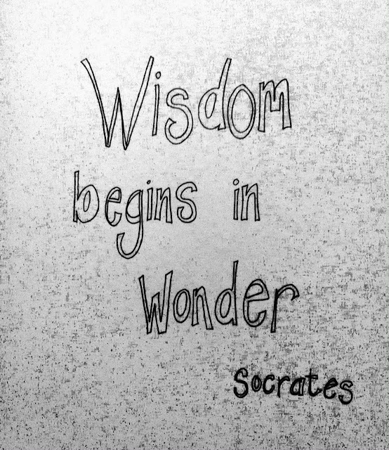 Day 5 of 365 - Wisdom begins in Wonder: Socrates - illustrated by Keri Muller (simpleintrigue.com)