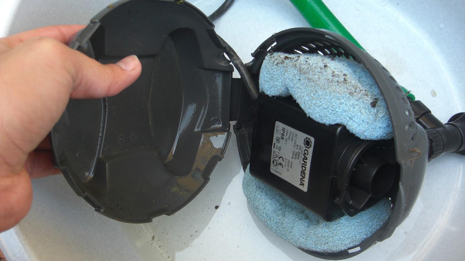 Mi vida acuatica sistema de filtraje bomba acuatica y for Filtro agua estanque