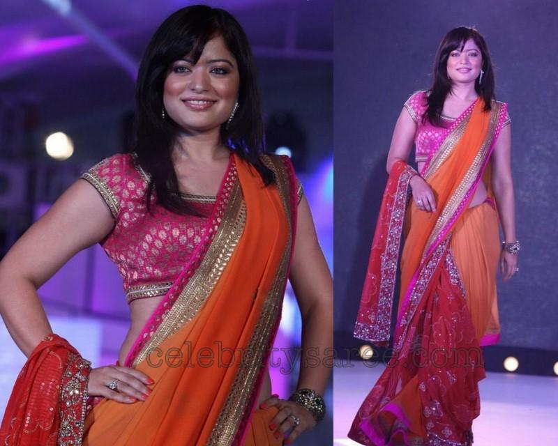 Gujarati Sarees Blouses Design Wholesale Blouse Designs