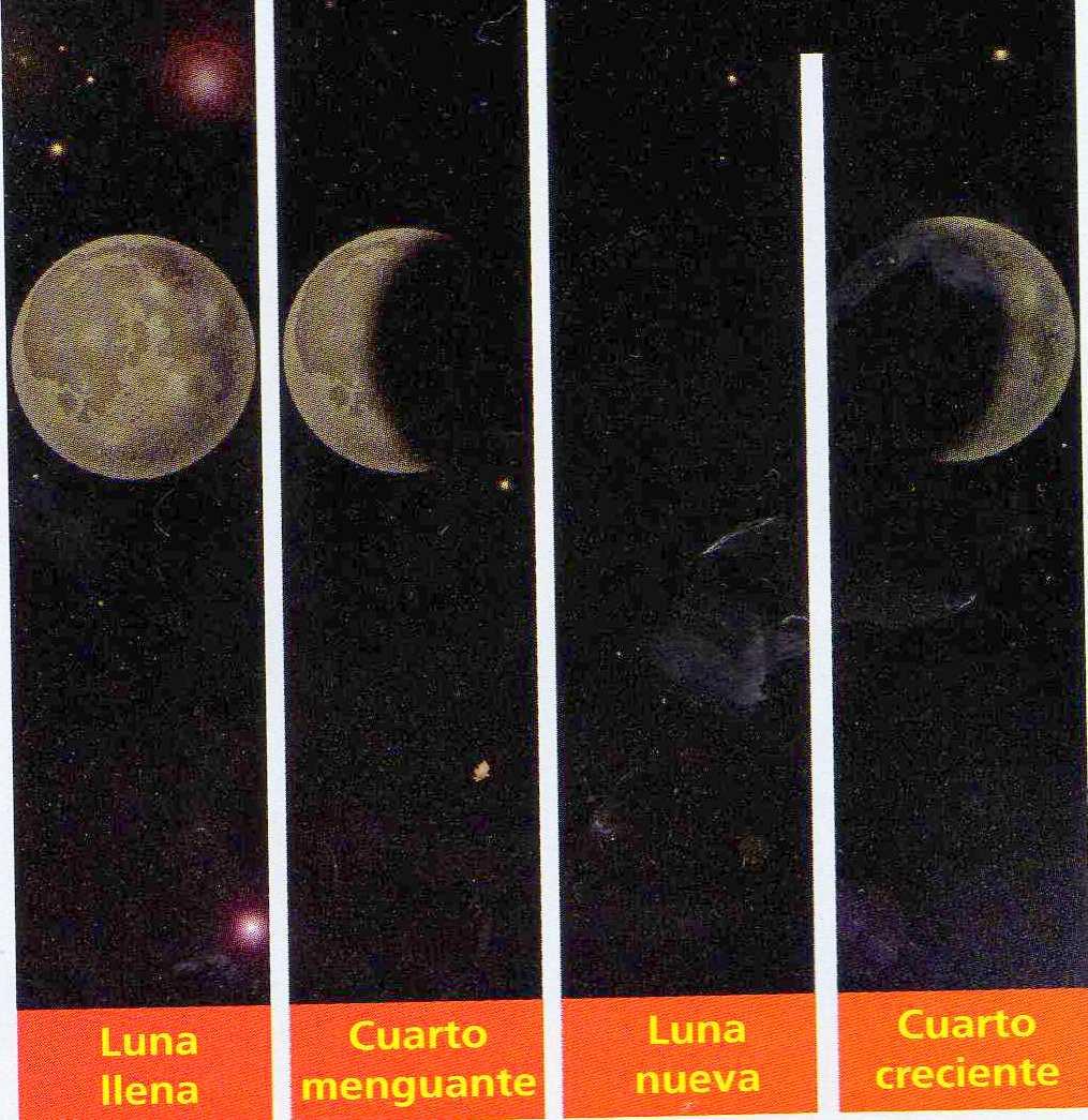 Estas formas corresponden a las fases de la Luna. Las fases son: Luna ...
