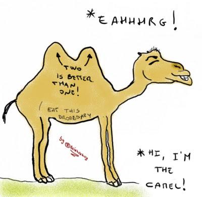 Disegno del cammello di Eratostene