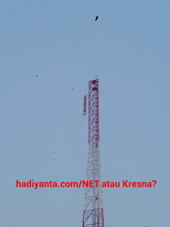 net tv jogja