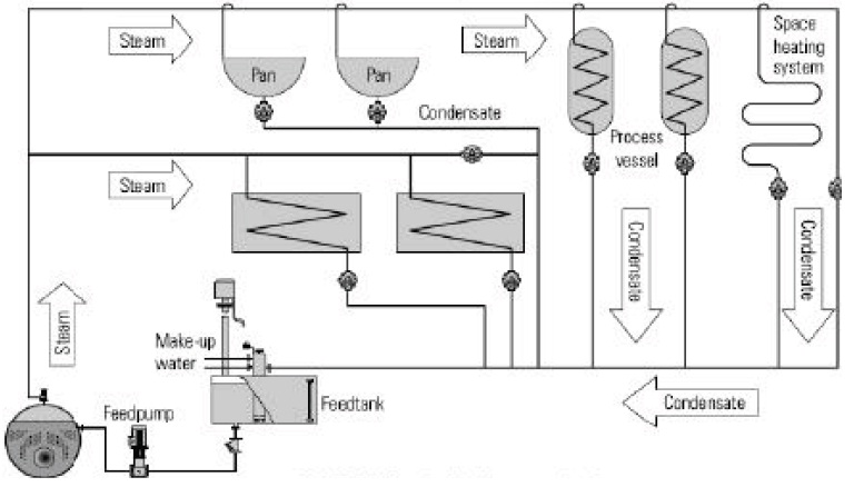 Steam Boiler: Steam Distribution System