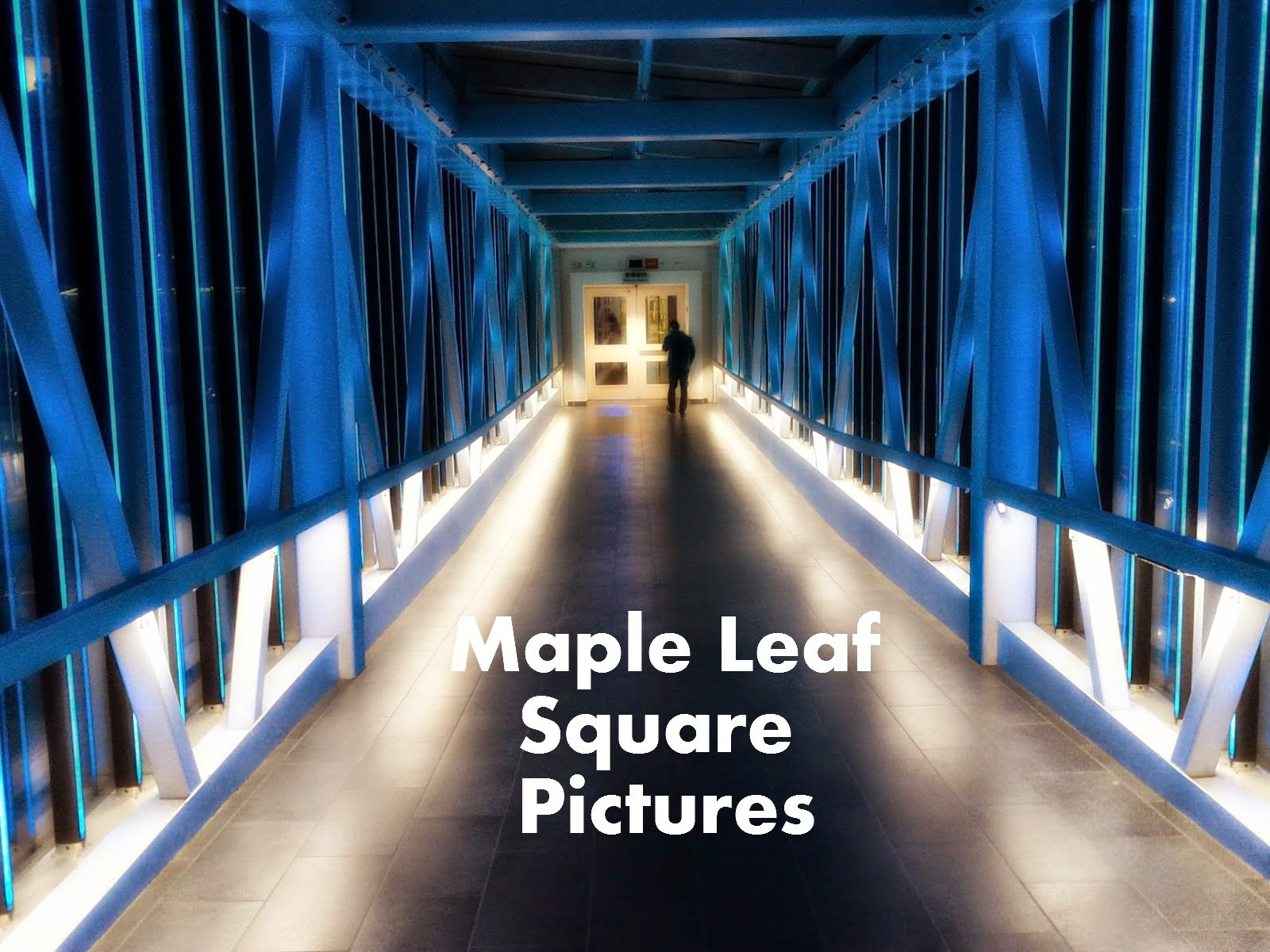Maple Leaf Square Pictures