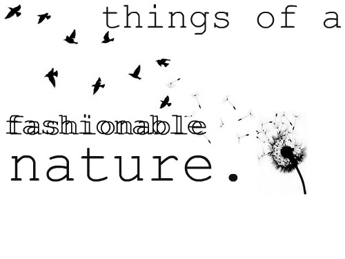 things of a fashionable nature.