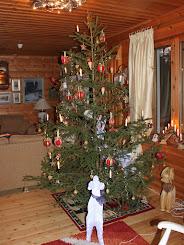 Joulu tulee