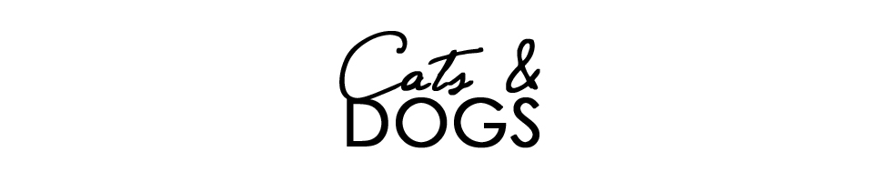 CATS & DOGS - fashion and style diary