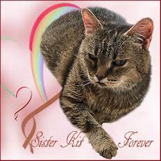 Sister Kit