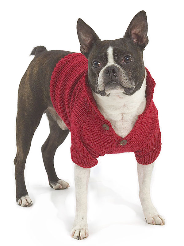 Dog Jumper Knitting Pattern : Miss julia s patterns free all about dogs