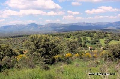 Cardena Montoro Mirador Cerro Tomillos