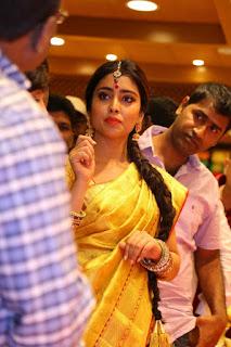 Actress Shriya Saran Pictures in Saree at VRK Silks Opening 05