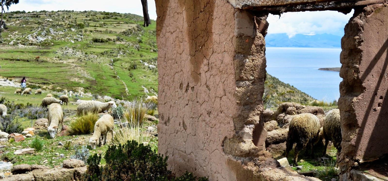 UnA MiRaDa De La ReAlIdAd: Isla del Sol en el Lago