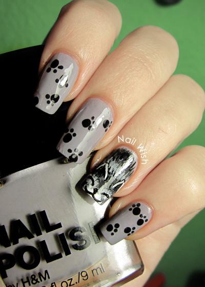 Cats Nails Don T Retract