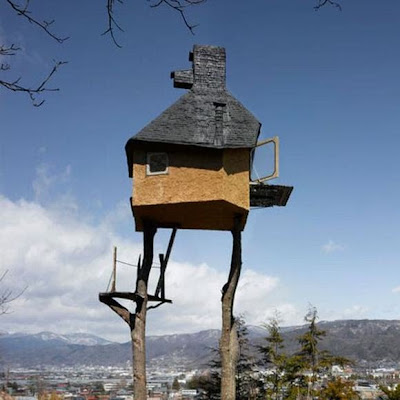 Rumah Pohon Paling Ekstrim Di Dunia most extreme tree house