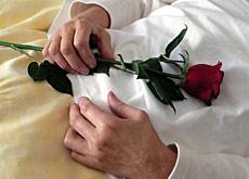 Puntos de vista eutanasia - Casos de eutanasia ...