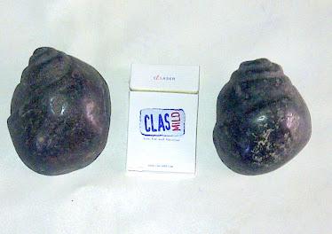 Spasang kol buntet hitam