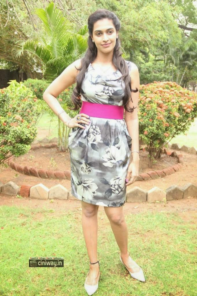 Sarabam-Actress-Salony-Luthra-Stills-at-Movie-Press-Meet